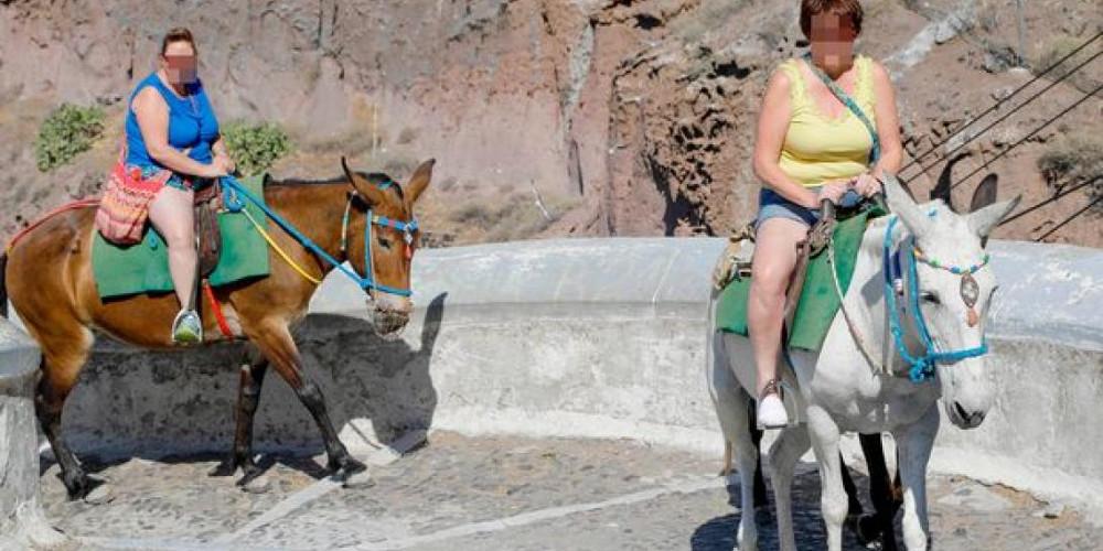 Δεν απαγορεύονται μόνο οι υπέρβαροι τουρίστες: Η εγκύκλιος για τα ιπποειδή έχει εκδοθεί από τον Αύγουστο